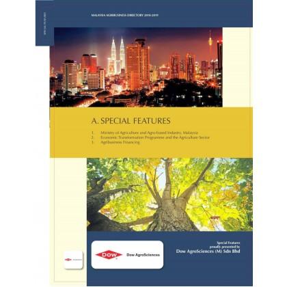 Premium Position - Section Divider